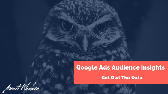 Google Ads Audience Insights -Get Owl The Data